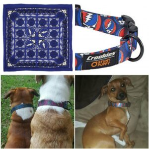Products for Dogs / Pets